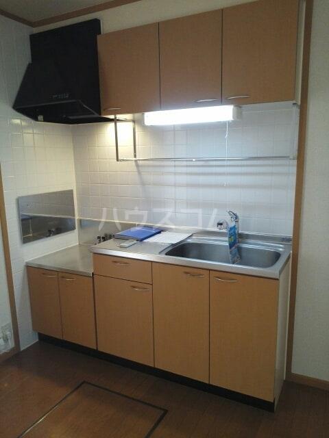 プラシドB 01010号室のキッチン