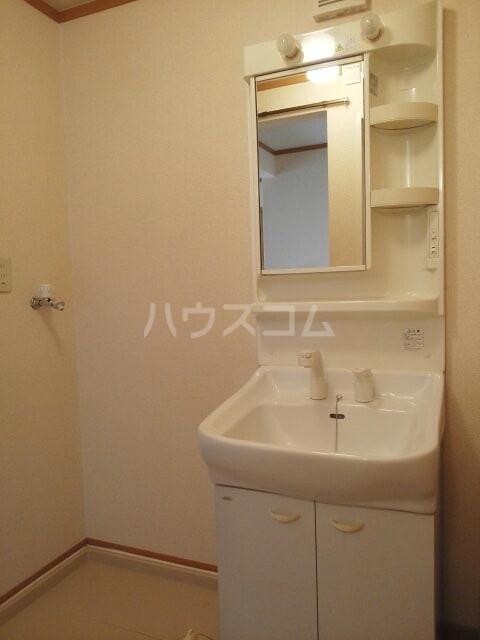 プラシドB 01010号室の洗面所