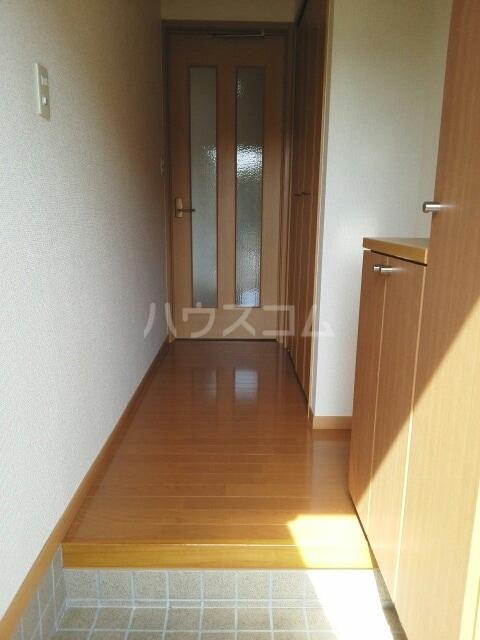 プラシドB 01010号室の玄関