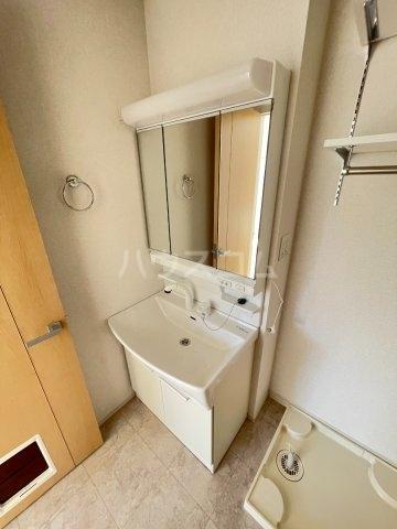 パレスアリオン佐倉Ⅱ 01030号室の洗面所