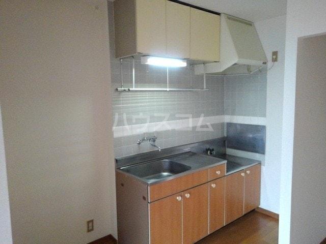 エルディム岩渕D 02010号室のキッチン