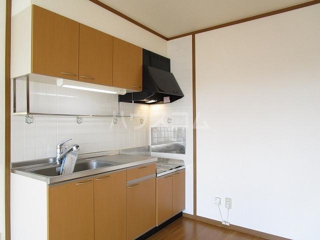 アルトイーガーA 02030号室のキッチン