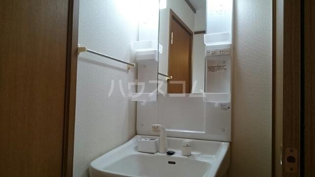 アルトイーガーA 02030号室の洗面所