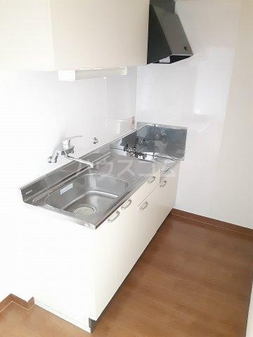 メゾン・ド・オオサワ 302号室の洗面所