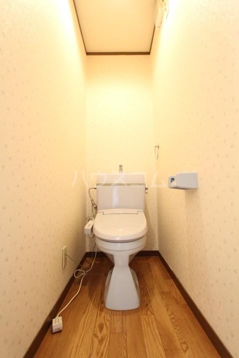 アートビレッジ 1B号室のトイレ