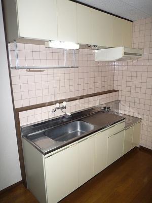 マンションマルカネ 203号室のキッチン