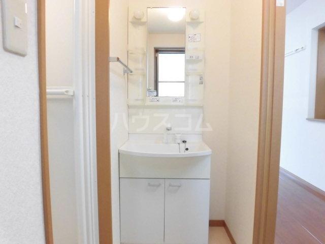 グレイスコート 201号室の洗面所