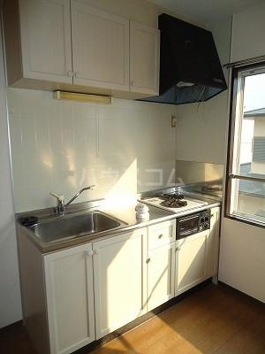 メゾン野見山台ⅡA棟 201号室のキッチン