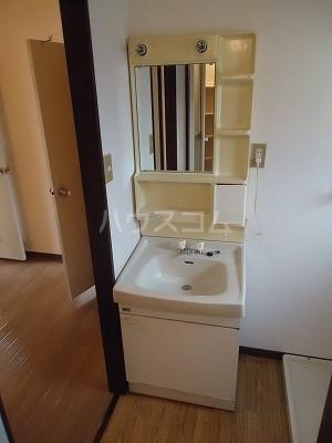 メゾン野見山台ⅡA棟 201号室の洗面所