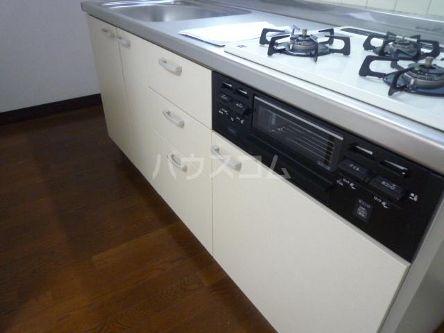 シャルム愛 202号室のキッチン