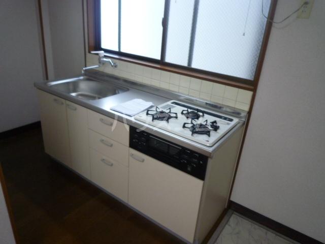 シャルム愛 203号室のキッチン