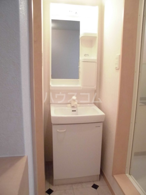 レザンヴィーゼ 101号室の洗面所