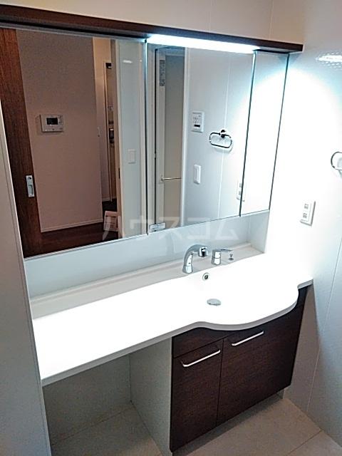チェリーコートⅣ 301号室の洗面所