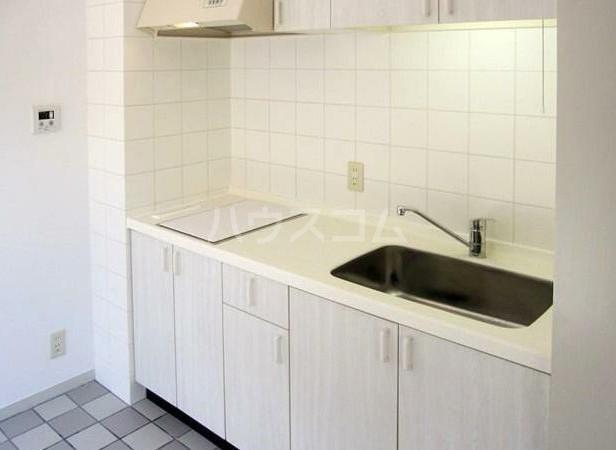 アパートメント雪谷 102号室のキッチン