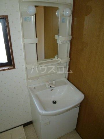 Villa Adonis D号室の洗面所