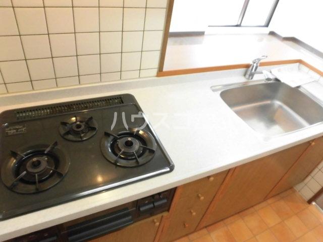メゾン土呂第1 201号室のキッチン