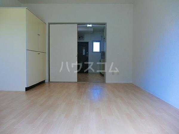 ローヤル石津Ⅱ 207号室のリビング