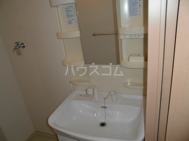 ベルウッド 202号室の洗面所