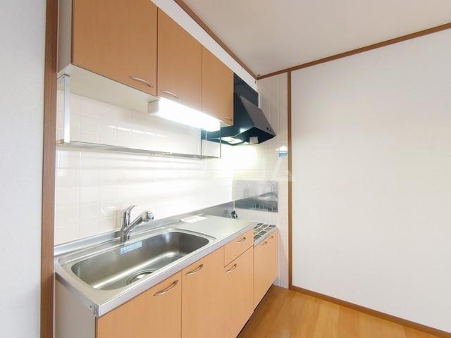 ヴィラフューゲルⅡ 02040号室のキッチン