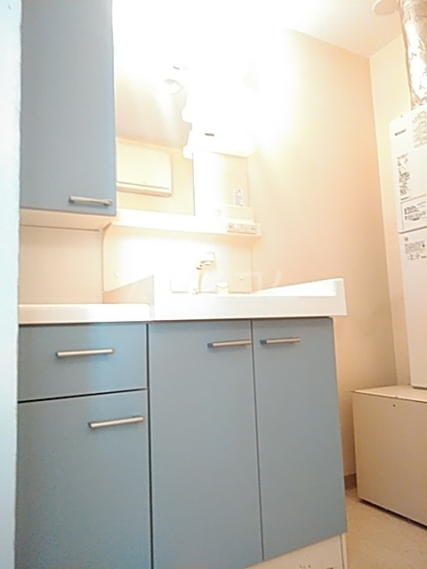 コートハウス町田 307号室の洗面所