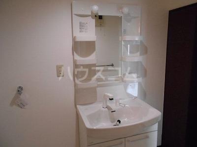 サンヒルズ緑 102号室の洗面所