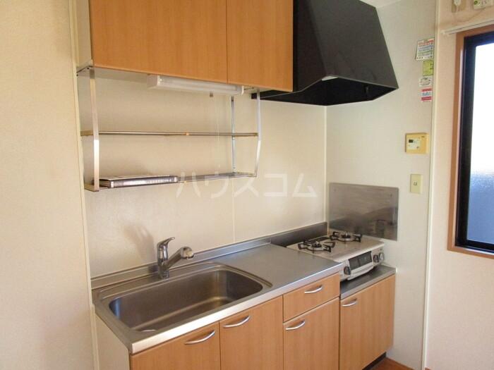 ヴィラ・モンターニュ 101号室のキッチン