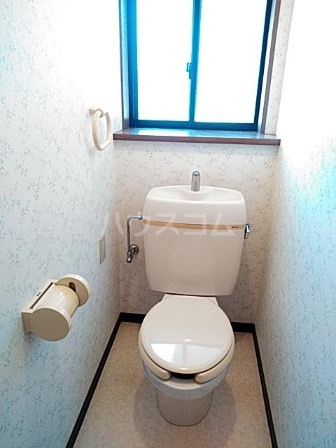 ビックストーンA 202号室のトイレ