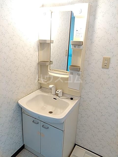 ビックストーンA 202号室の洗面所
