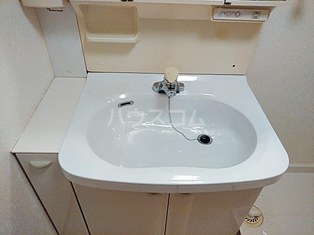ウエストコート花園 404号室の洗面所