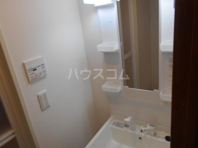 アムール アンバー 201号室の洗面所