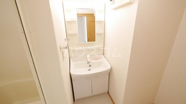 セイバリ- 02010号室の洗面所