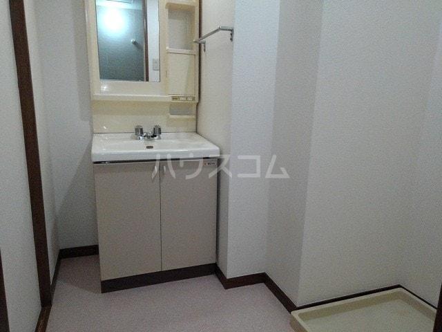 グリュークアネックス A 02020号室の洗面所