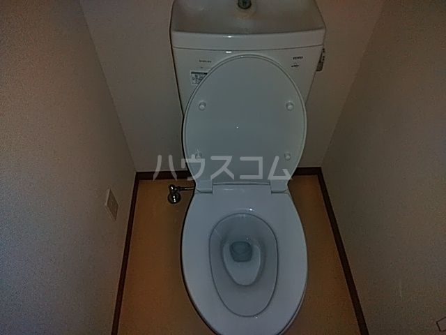 エバーグリーン 203号室のトイレ