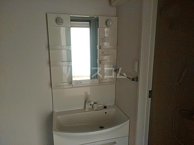 エバーグリーン 203号室の洗面所