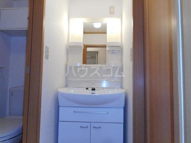 ブリズⅣ 02010号室の洗面所