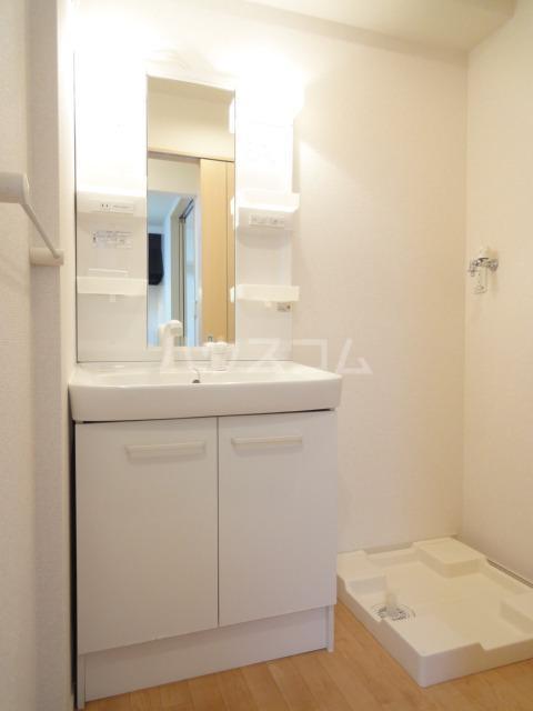 シャスタ トレンド 01020号室の洗面所