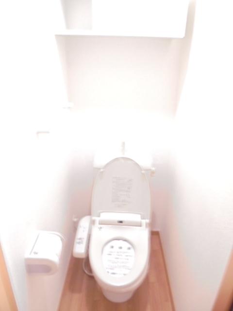 グレイス 01030号室のトイレ