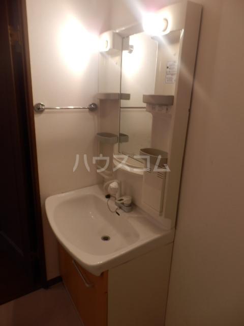アーバンハイツ中町Ⅱ番館 203号室の洗面所