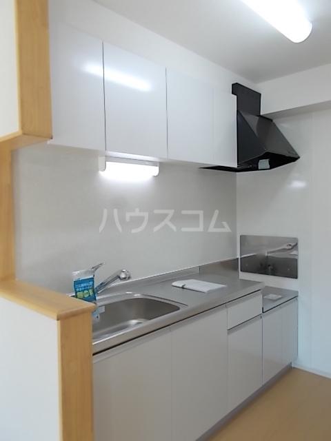 Mt.View 02030号室のキッチン
