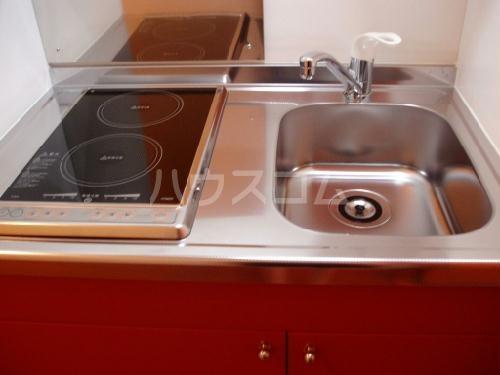 レオパレスMONEⅡ 209号室のキッチン