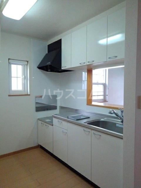 カーサ アルドール 02030号室のキッチン