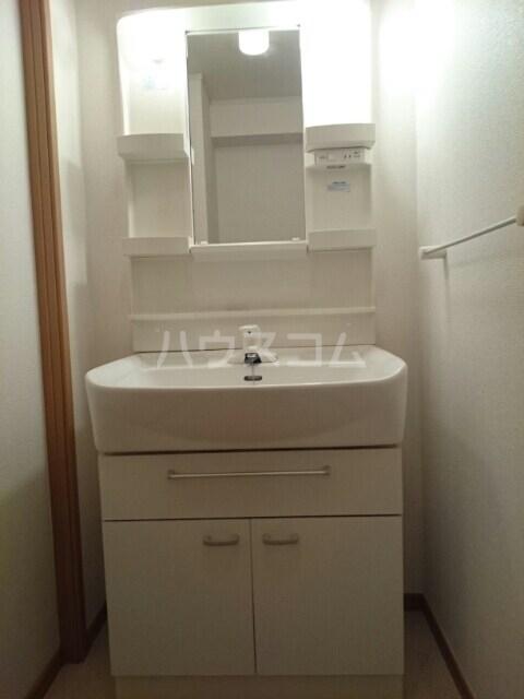セイバリーⅡ 01020号室の洗面所