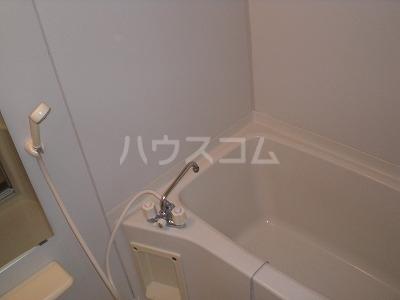 ロイヤルヒルズ 03040号室の風呂