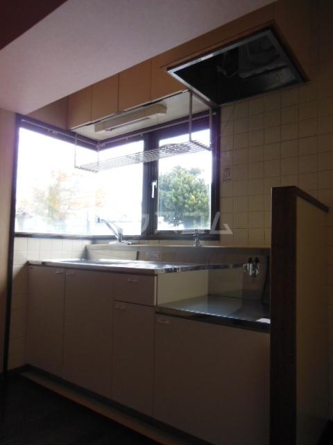 ハイツ・弥生 301号室のキッチン