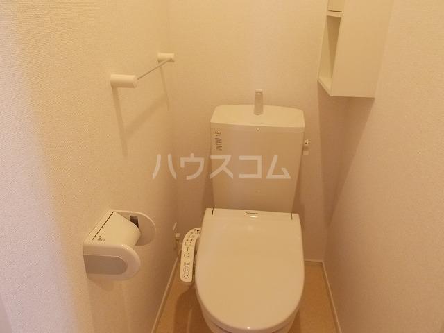 グレイスセレノ 02030号室のトイレ