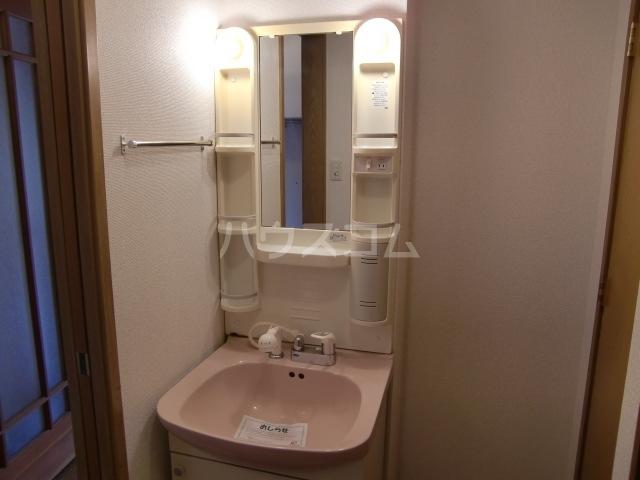 サニ-リゾン 01020号室の洗面所