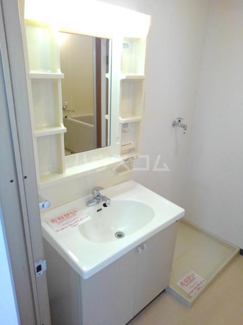 ロマネスクローズ A 02010号室の洗面所