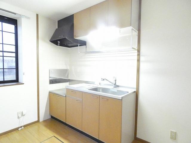 ソレアード・パラーシオ 01020号室のキッチン