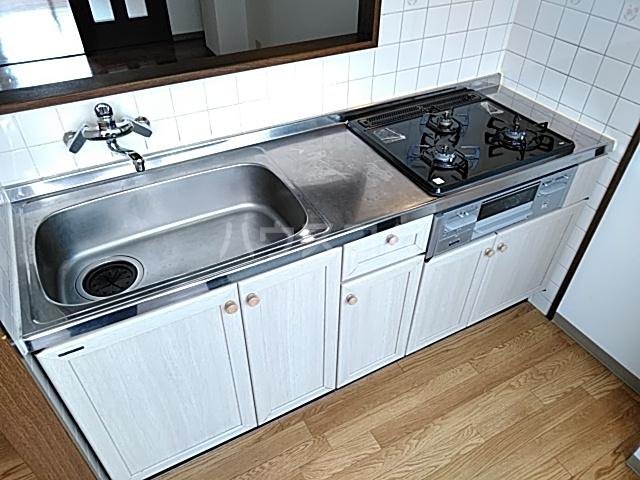 ネオキャッスル B 302号室のキッチン