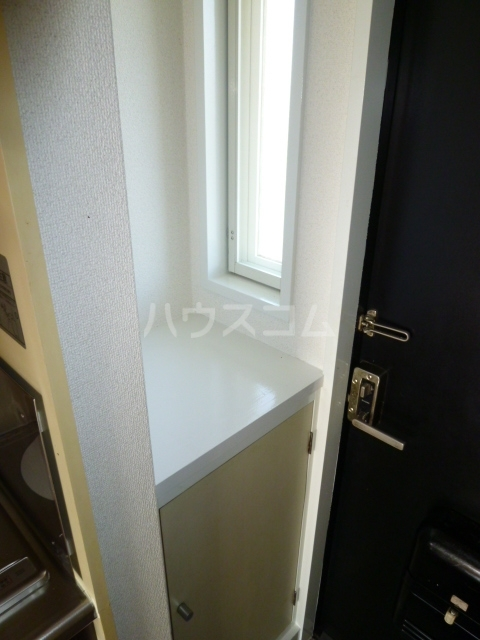 アルファネクスト津田沼第5 203号室の洗面所